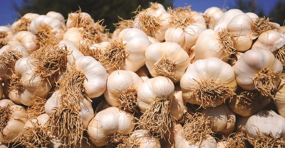 Karaduman Tarım & Hayvancılık & Yöresel Ürünler